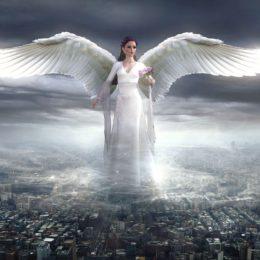 Dostala jsem křídla…